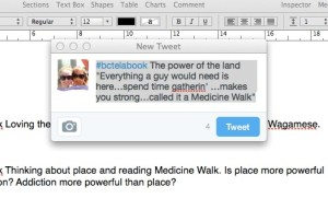 Medicine Walk quote2